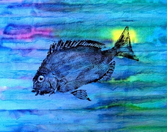 GYOTAKU fish Rubbing Batik Scup 8.5 X 11 Fisherman Gift quality salt Water Porgy Art Print by artist Barry Singer