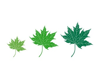 Pile of Leaves Family Car Decal