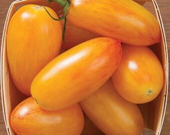 Blush Tomato 5+ seeds