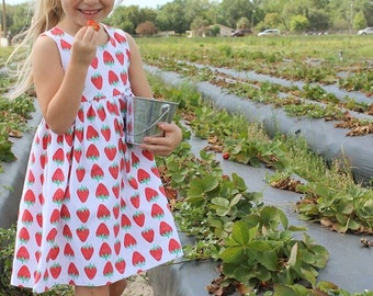 Strawberry Dress, baby dress, toddler dress, girl dress, summer dress, strawberry outfit, summer outfit, fruit dress