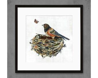 Towhee in Nest Art Print