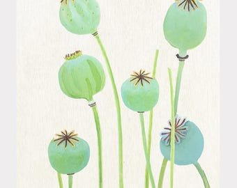 Print:  Poppy Pods on Ecru