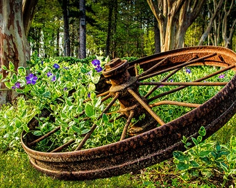"""Old """"Rusted Wheel"""" Fine Art Photography, 8x12 (and larger), Landscape Photograph, Antique Vehicle Wall Art, Rustic Garden Photo Print"""