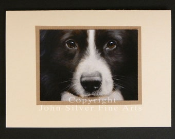 Border Collie Dog Portrait Hand Made Greetings Card. From Original Paintings by JOHN SILVER. GCBC014