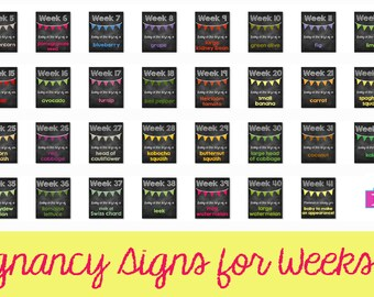 Pregnancy Signs for Weeks 4-41