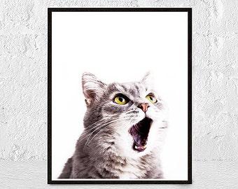 cat print, cat wall art, instant download, cat illustration, cat lover gift, cat wall decor, digital illustration, home decor, printable art