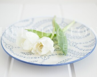 White stock photo | Blue lifestyle stock photo - Photo for Instagram - Simple stock photo - White flower stock photo - Styled stock photo