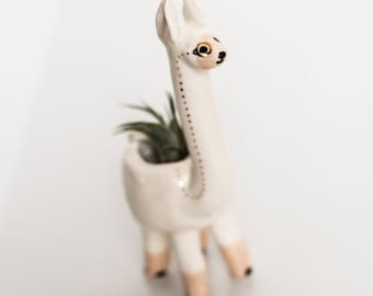 Llama Monomal (llama planter, animal planter, monocle planter, alpaca planter, cute pot, air plant)