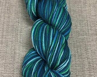Cascade Heritage Silk Paints - color 9809