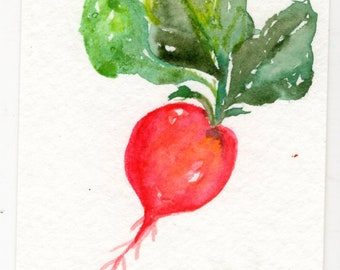 ACEO Red Radish  Painting Art Card Watercolor, Original