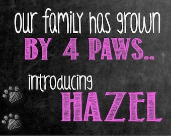 Digital Chalkboard || New Dog || New Puppy || Growing Family || Announcement