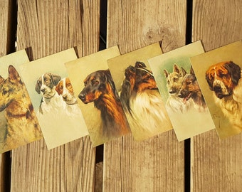 Lot 6 postcards with vintage painted dogs