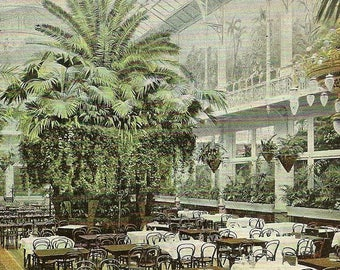 Amsterdam Hotel Krasnapolsky (Wintertuin) Dining Room on Antique Postcard 1904