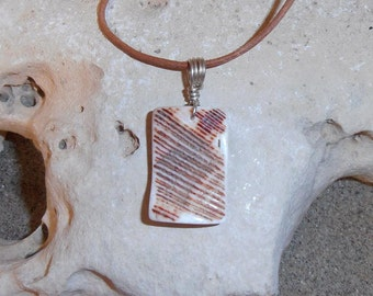 Shell pendant- CONTRAST features a piece of shaped and polished Lion's Paw Shell with a Silver wire bail.