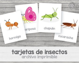 Printable kid's insect flashcards, spanish