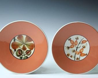 Pair of Faience Denmark Alumnia salad/bread plates - Dragon Fruit and Berries