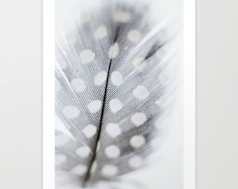 Large Feather Print // Neutral Color Feather Prints // Feather Art // Large Living Room Wall Art Prints // Feather Prints Still Life Prints