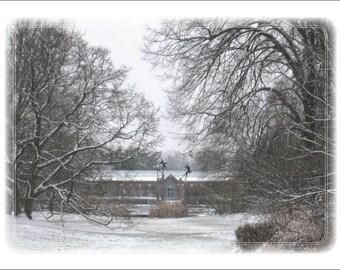 Toward Linnaean House, Winter (Missouri Botanical Garden)