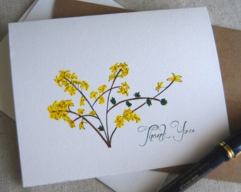 Forsythia, Thank You, Folded Note, Card Set, Blank Inside, Garden Party, Hostess Gift, Floral Theme, Gardeners Gift, New Beginnings, Spring