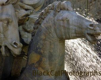 Italian Photography, Horse Photo, Water Fountain Sparkle, horse lover, architecture, grey stone statue, Italian wall art, 5x7 fine art photo