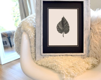 """Leaf Freehand Ink Drawing Limited Edition Print by Calista Renee, Signed, Numbered, choose 8"""" x 8"""" OR  8"""" x 10"""""""