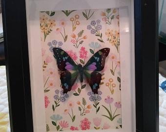 Purple Spotted Butterfly