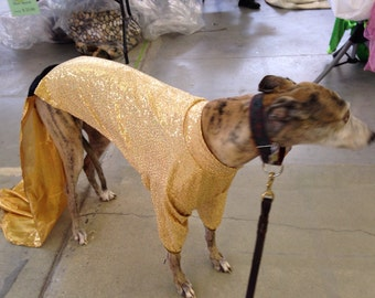 Greyhound Sequined New Year's Eve / party dress fits 75-80 lb hound