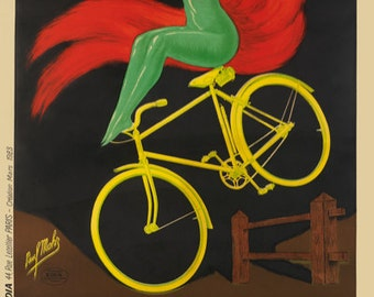 Bicycles Dainty Bicycle Poster (#1433) 6 sizes
