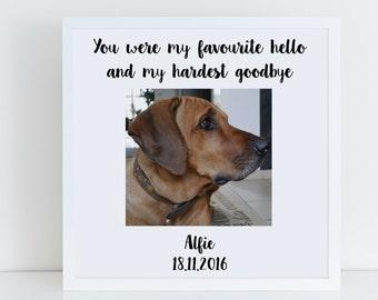 Pet Photo Frame, Personalised Pet Memorial Frame, Cat Photo Frame, Dog Photo Frame, Pet Loss, You Were My Favourite Hello Hardest Goodbye