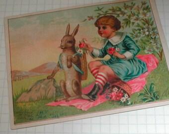 Bunny and Boy Picnic PostCard