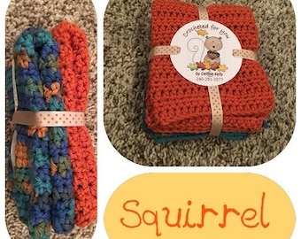 Crocheted Dishcloths-Squirrel