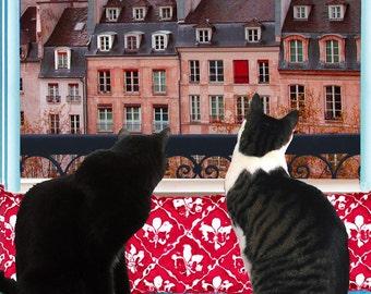 Blank Cards, Cat Greeting Cards, Paris Print, Blank Note Cards, Photo Notecards, Collage, Cat Artwork, Deborah Julian
