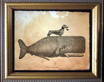 Dachshund Wiener Dog Riding Whale - Vintage Collage Art Print on Tea Stained Paper -  dog art - dog gifts -- graduation gift