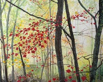 Mystic Forest - Orginal Acrylic Art Print Cards