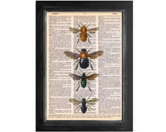 Bee Display - printed on Recycled Vintage Dictionary Paper - 8x10.5 - Dictionary Art Print