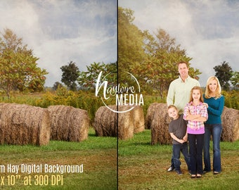 Beautiful, Rustic Outdoor Nature Backdrop Scene - Hay Stack Country Photo - Digital Photography Background for Children, Family or Couple