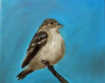 Little Bird - Original Oil Painting 8x10