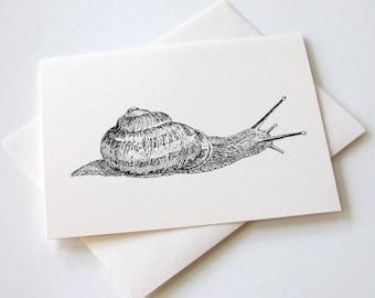 Snail Notecards - Set of 10