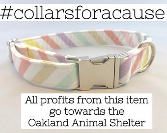 Pastel Striped Dog Collar · Pastel Dog Collar · Solid Color Collar · Girl Dog Collar · Boy Dog Collar · Striped Dog Collar