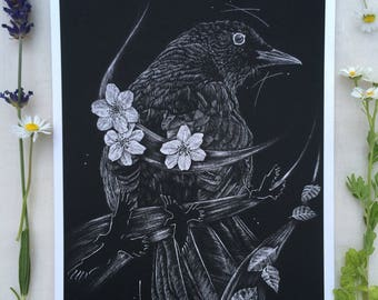 Blackbirds Song - A5 giclee print
