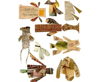 cabinet of curiosities 2, mixed media insect collection, mixed media art, mixed media print, mixed media collage, collage