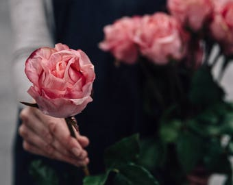 Faux Closed Pink Rose Stem