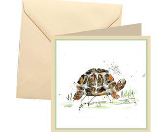 Tortoise greetings card, blank card, greetings card, birthday card, note card, thank you card, tortoise thank you card, tortoise card