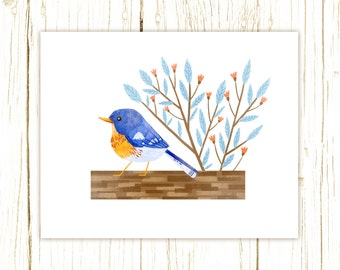 Northern Parula Print -- bird art -- bird art 52 birds stephanie fizer coleman illustration warbler