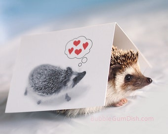 Boomer the Hedgehog Hedgie Greeting Card Valentine Hearts A2 Note card featuring our Studio Mascot
