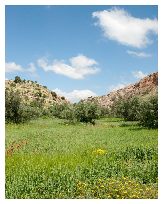 Nature Photography, Green, Blue, Yellow, Red, Brown, Spring decor,  Morocco, Landscape Art, Travel Photograph,  Valley Scenery