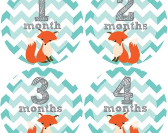 Baby Month Stickers, Monthly Baby Stickers, Monthly Milestone Stickers, Baby Monthly Stickers, Baby Belly Stickers, Baby Fox
