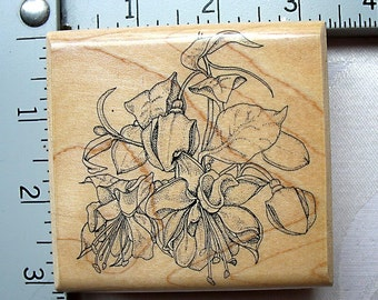 RARE Mostly Animals Graduated Fuchsia DESTASH Rubber Stamp, hanging fuchsias rubber stamp, fuchsia basket stamp