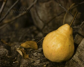 Digital Download photography Pear