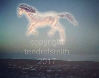 horse in the sky, digital download, color photograph
